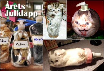 """Katterna finns i flera varianter: """"ölglaset"""", """"nappflaskan"""" och säsongsmedvetna """"julkulan"""""""