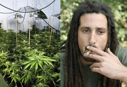 """En känd bieffekt av cannabis är den så kallade """"Hippie-effekten"""" där nyttjaren får långa dreadlocks och ser ut som en äcklig slodis."""