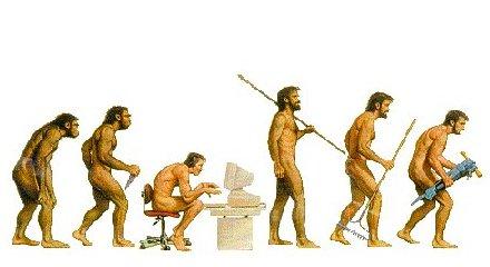 Evolutionen som den ser ut numera.