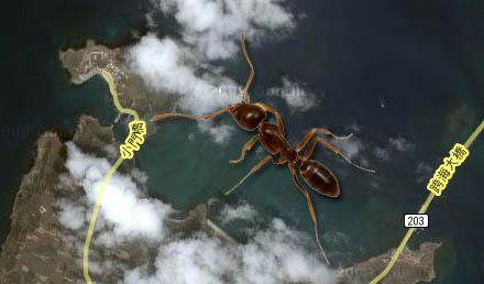 Myran syns klart och tydligt på en ögrupp väster om Taiwan.