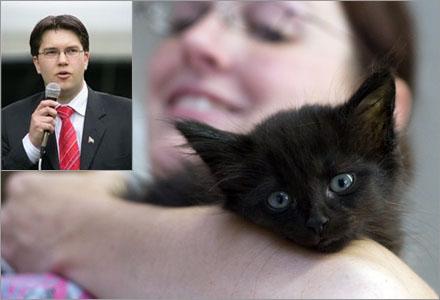 Sofie från Stockholm sålde två kattungar till Sverigedemokraternas partiledare.