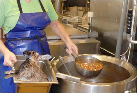 Idag är det Stampes tur att bli lunch åt lågstadieeleverna.
