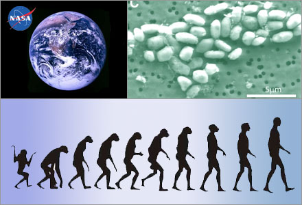Människan har visat sig vara den dummaste livsformen i universum.