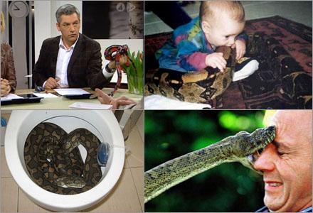 """Med en orm i hushållet är vardagen full av """"roliga"""" överraskningar."""