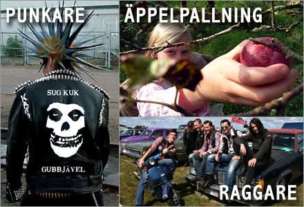 Äppelpallning, raggare, punkare och skinheads är alla sossarnas fel.