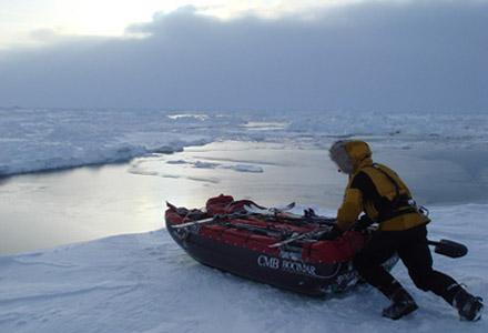 Bara riktiga praktfittor ger sig ut på poänglösa resor till Arktis.
