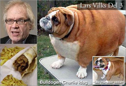 Den tvångsmatade bulldogen Charlie är Lars Vilks senaste konstverk.