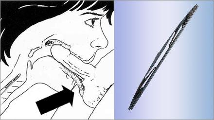 """""""Vindrutetorkare"""" är när kvinnans tunga rytmiskt rör vid mannens testiklar under så kallad """"deep throating""""."""
